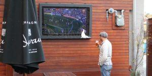 Man watching TV drinking a beer in a beer garden