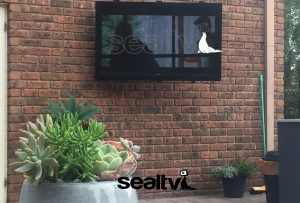 SealTV - Brighten up your garden